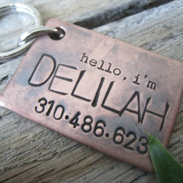 hello, i'm Dog ID Tag