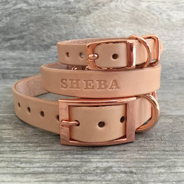 Rose Gold Leather Dog Collar